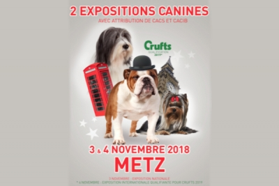EXPOSITION NATIONALE ET INTERNATIONALE - METZ
